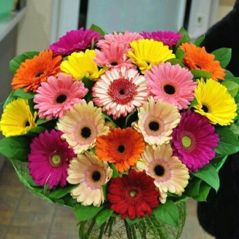 Gerberas Bouquet 015