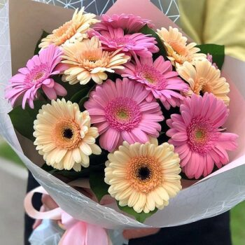 Gerberas Bouquet 024