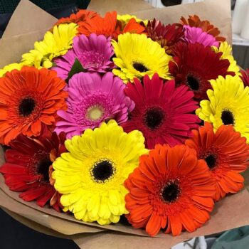 Gerberas Bouquet 031