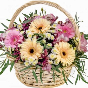 Gerberas Basket FB010