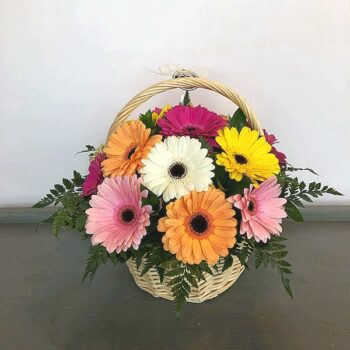 Gerberas Arrangement